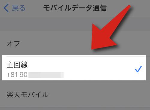 楽天モバイルのインストールで「主回線」が選択されている。